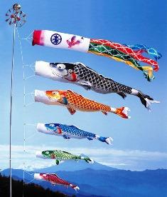徳永こいのぼり 慶祝の鯉 吉兆 5m 6点 セット [koi-0013]