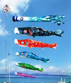 徳永こいのぼり 薫風の舞い鯉 風舞い 5m 8点 セット [koi-0220]