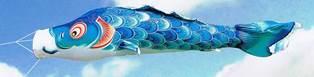 徳永こいのぼり 薫風の舞い鯉 風舞い 青鯉 単品 1m [koi-0277]