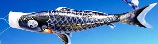 徳永こいのぼり よろこびの鯉 千寿 黒鯉 単品 4m [koi-0467]
