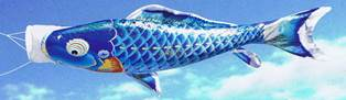 徳永こいのぼり よろこびの鯉 千寿 青鯉 単品 0.8m [koi-0489]
