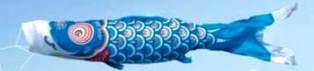 徳永こいのぼり 金太郎ゴールド鯉 青鯉 単品 1.5m [koi-1047]