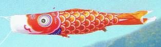 徳永こいのぼり 金太郎ゴールド鯉 橙鯉 単品 5m [koi-1059]