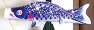徳永こいのぼり 室内飾り 星歌スパンコール 単品 青鯉 55cm [koi-1557]
